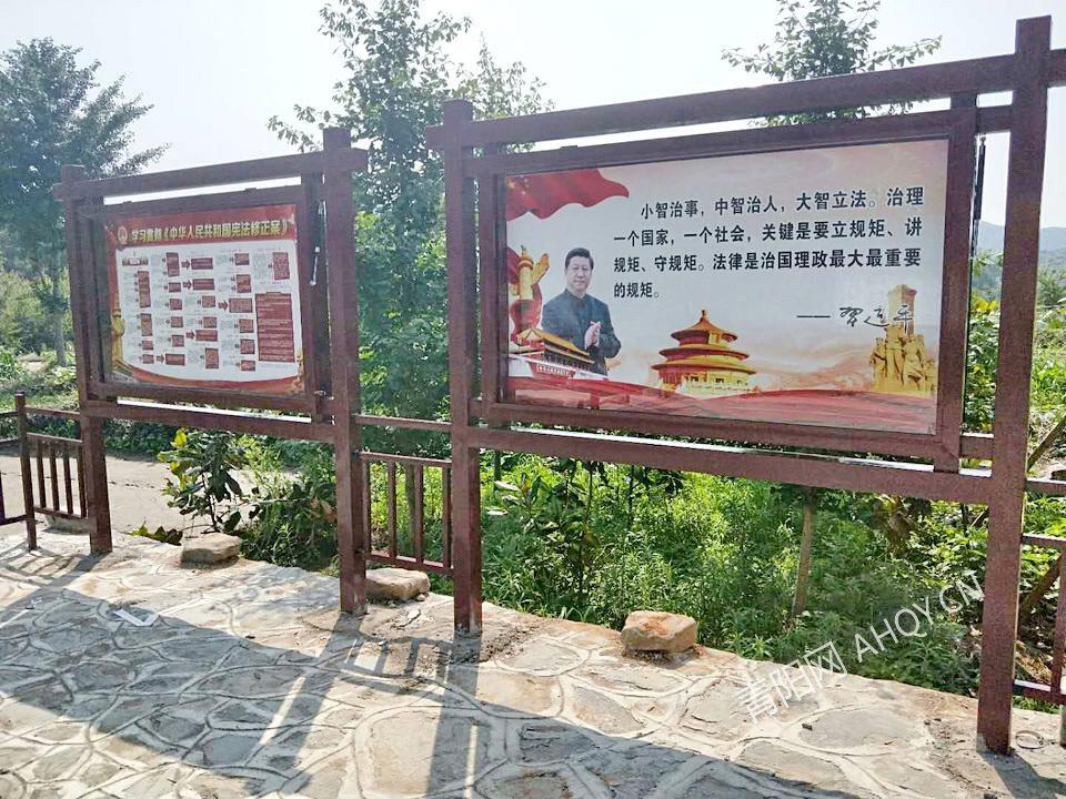 丁桥杨西冲 (2).jpg